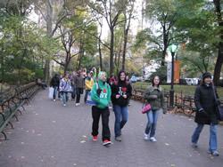 york26